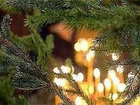 С Рождественским постом!